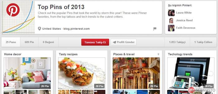 pinterest en iyi pinler 2013