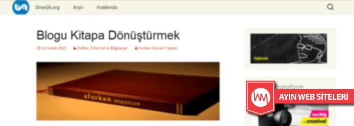 sinerjik.org_