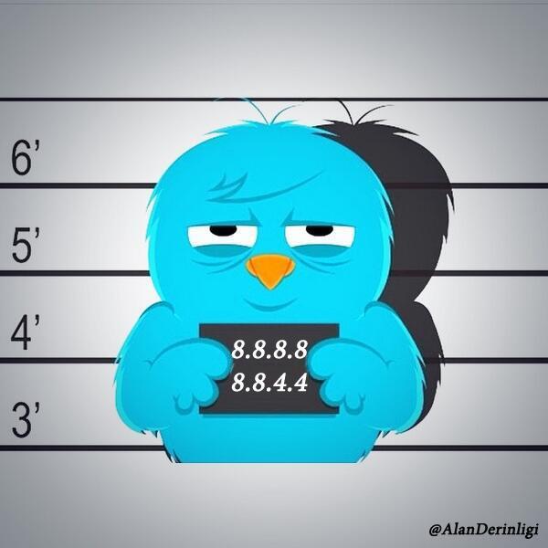 Tutuklu Twitter Kuşu ve DNS adresi
