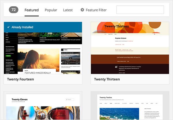 WordPress tema sayfası