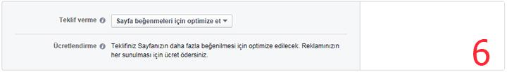 Facebook'a reklam verme 6