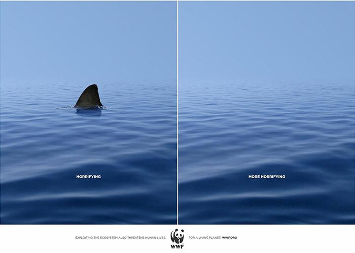 (WWF)