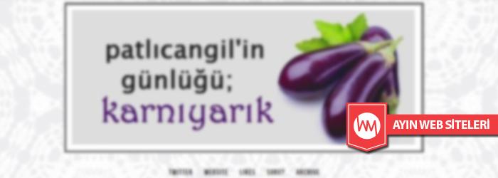 patlicangil.tumblr.com