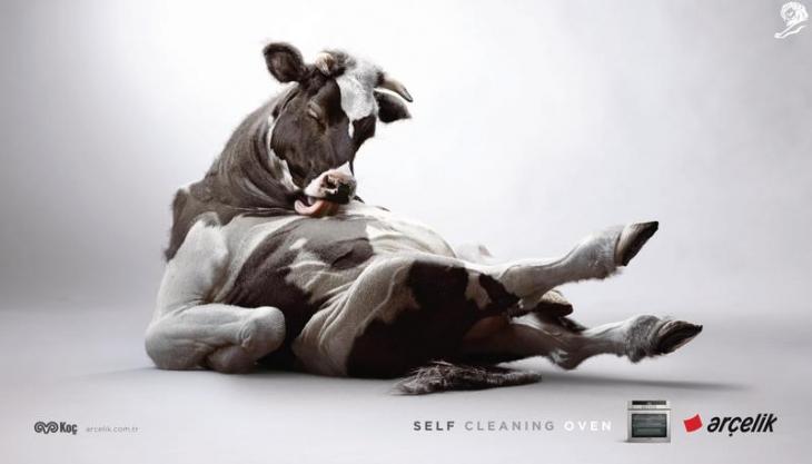 Cow - Arçelik