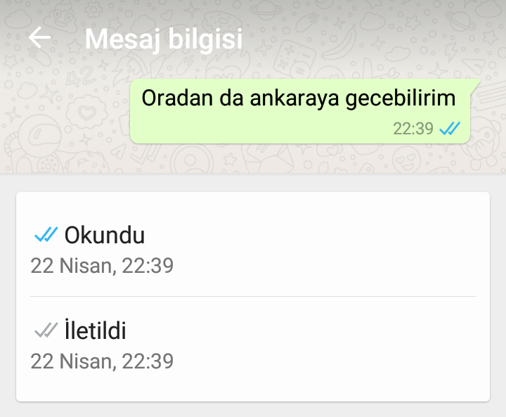 WhatsApp Okundu Bilgisi