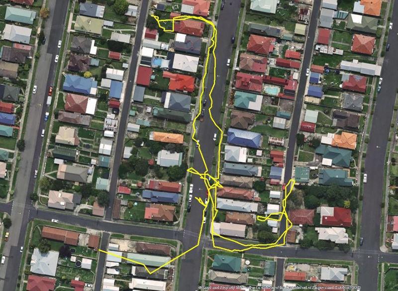 Kedi guzergahlari GPS 04