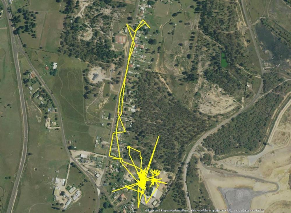 Kedi guzergahlari GPS