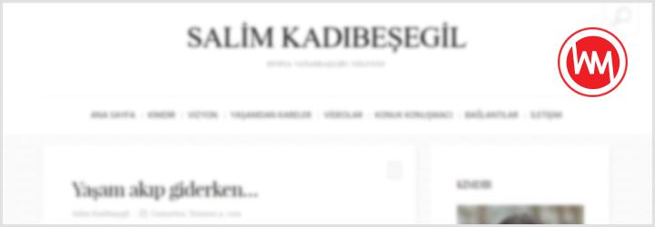 salimkadibesegil.com