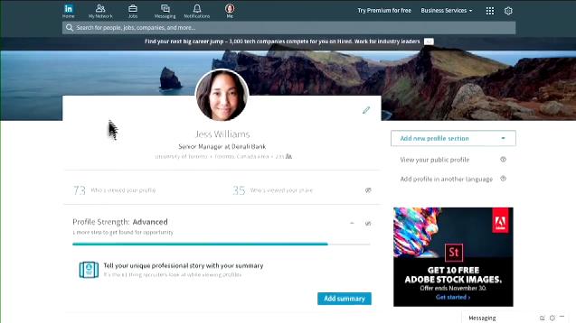 LinkedIn Profilleri 2016