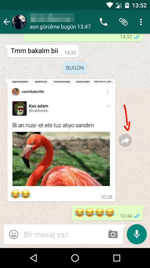 WhatsApp Medya Yönlendirme
