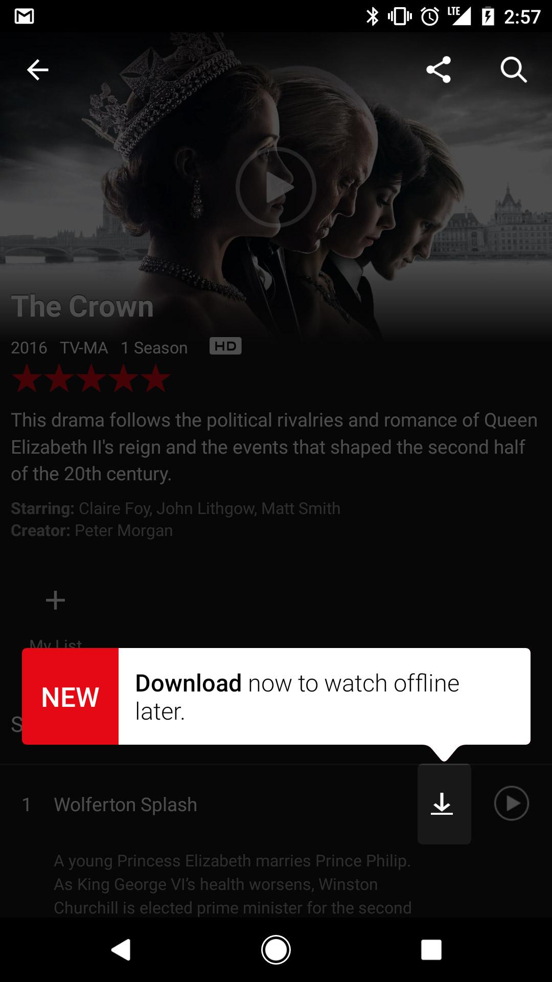 Netflix Çevrimdışı İzleme Offline